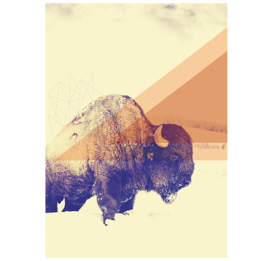 mestre bison-01