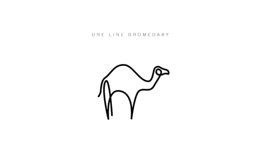 desenhos-minimalistas-animais-differantly-dromedario