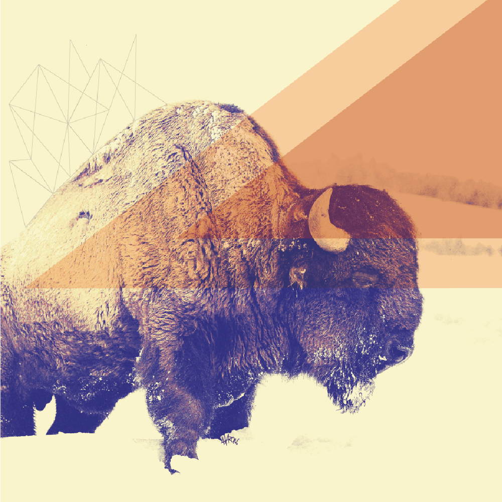 Poster – Mestre Bison