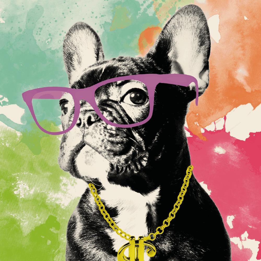 Poster – Dog Ostentação