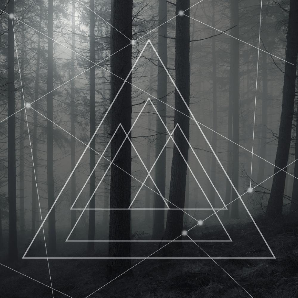 Poster – Tree Angle
