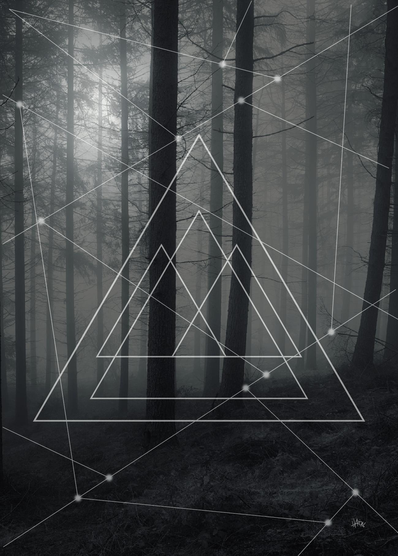 tree angle-01